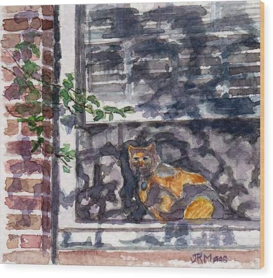 Cat Behind The Screen Wood Print