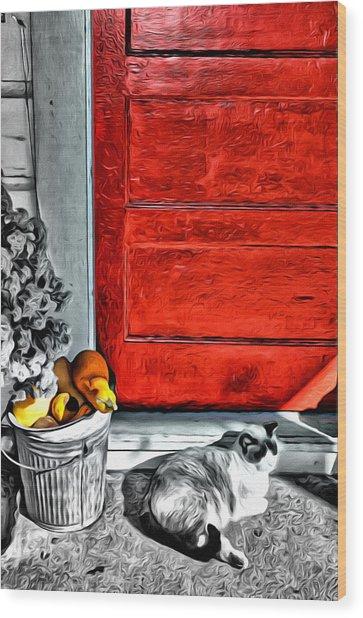 Cat By The Red Door Wood Print