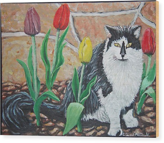 Cat By The Tulips  Wood Print