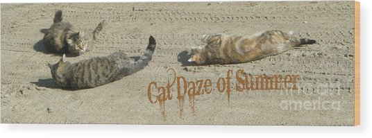 Cat Daze Of Summer Wood Print
