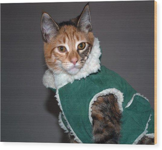 Cat In Patrick's Coat Wood Print