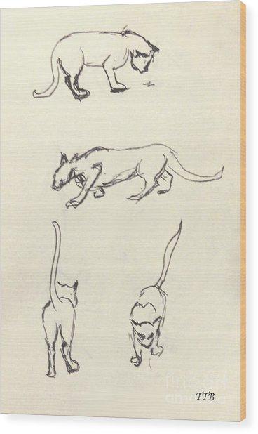 Cat Lines Wood Print