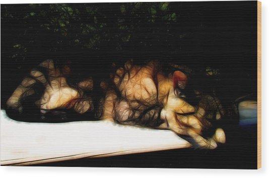 Cat Nap 1 Wood Print