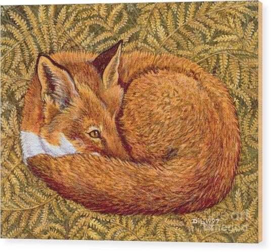 Cat Napping Wood Print