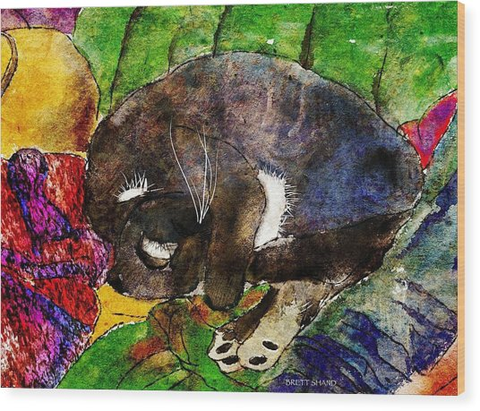 Cat On Clothes Wood Print