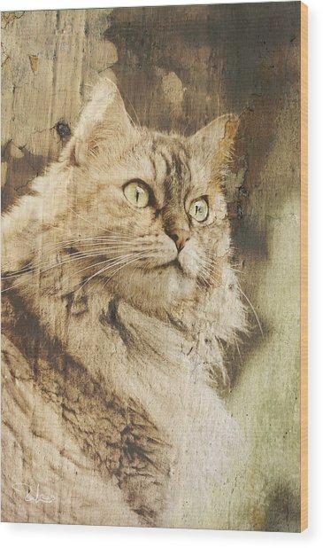 Cat Texture Portrait Wood Print