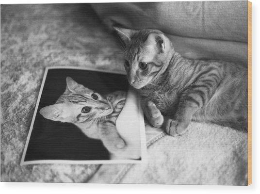 Cat Vanity Wood Print