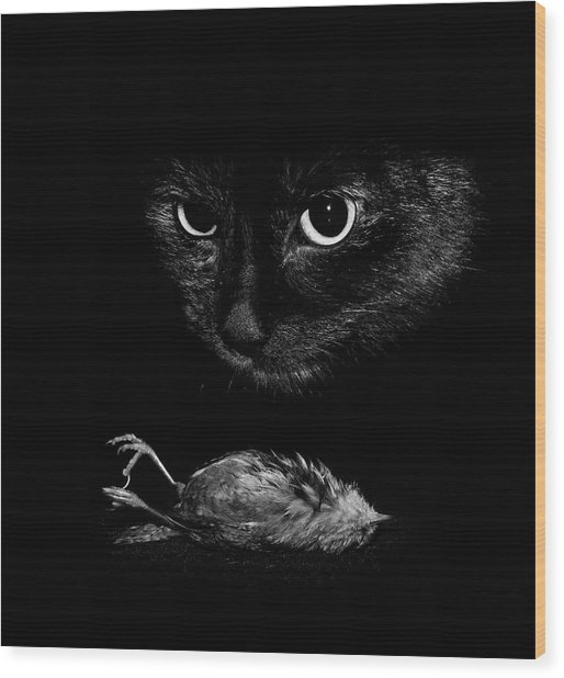 Cat With A Dead Bird Wood Print