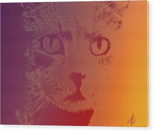 Cat With Intense Stare Abstract  Wood Print by Denise Beverly