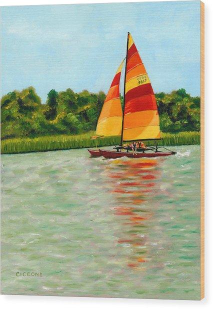 Catamaran  Wood Print