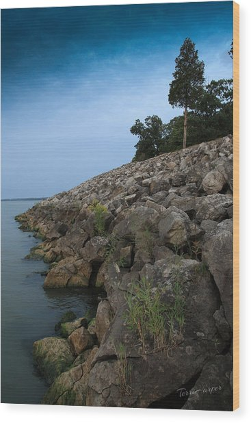 Catawba Point Shoreline Wood Print