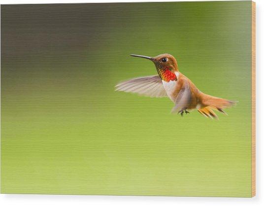 Catching Motion Wood Print
