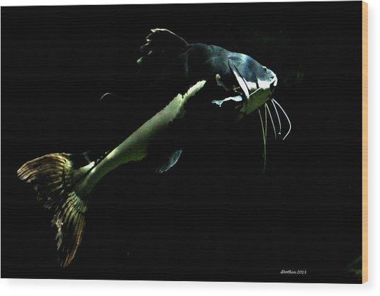 Catfish Are Jumpin Wood Print by Dick Botkin