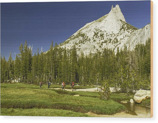 Cathedral Lakes-yosemite Series 17 Wood Print by David Allen Pierson
