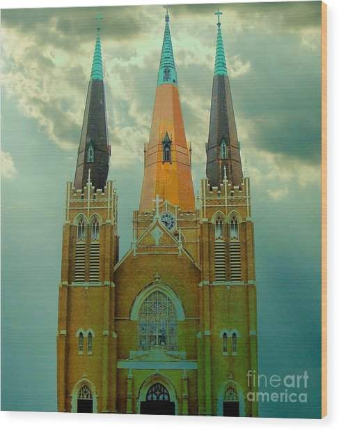 Cathedral Of The Holy Family  Wood Print