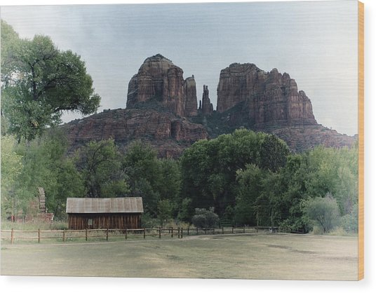 Wood Print featuring the photograph Cathedral Rock by Gigi Ebert