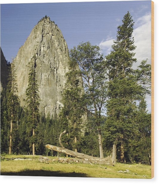 Cathedral Spires-yosemite Series 04 Wood Print by David Allen Pierson