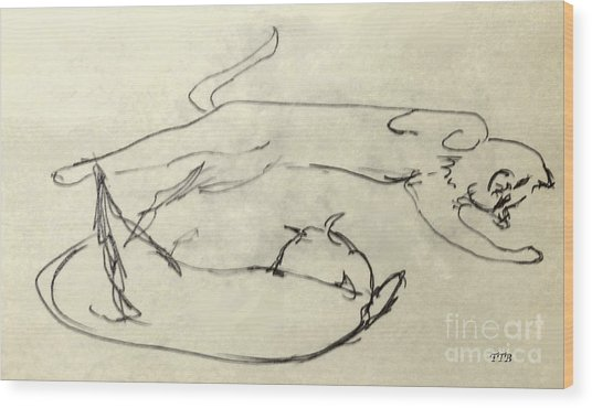 Cats A-courting Wood Print