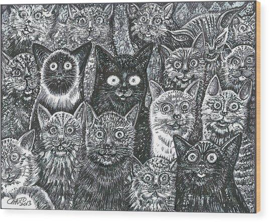 Cats Eyes Wood Print