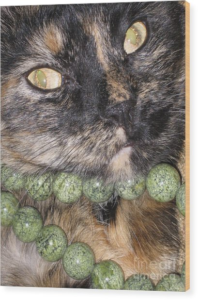 One In A Million... Beauty Of Cat's Eyes. Hello Pearl Collection Wood Print