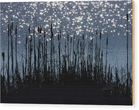 Cattails And Sparkle Wood Print