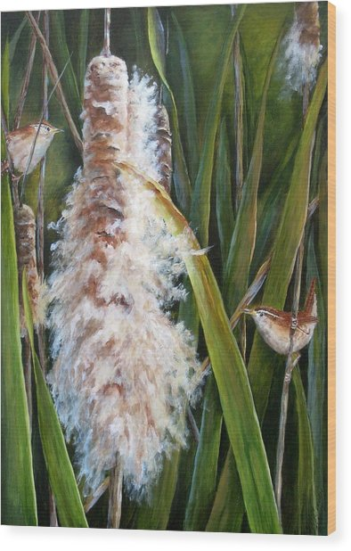 Cattails And Wrens Wood Print