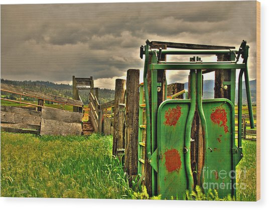 Cattle Chute Wood Print