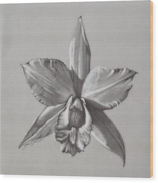 Cattleya II - Iwanagara Wood Print