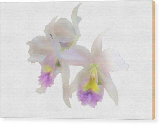 Cattleya Orchids Softly Wood Print by Rosalie Scanlon