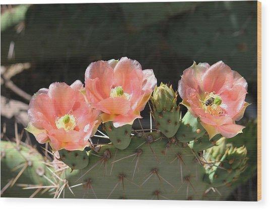 Cactus Plus Friend Wood Print