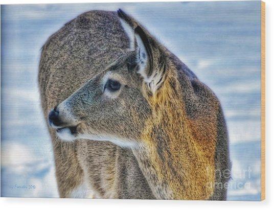 Cautious Deer Wood Print