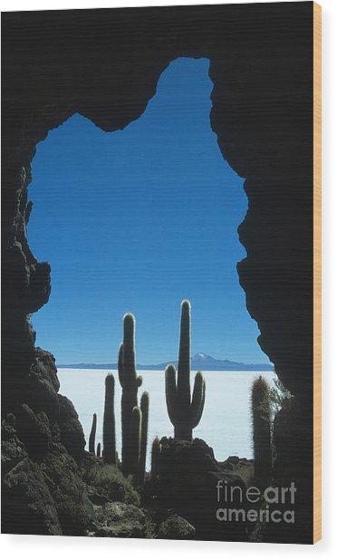 Cave And Cacti Incahuasi Island Wood Print