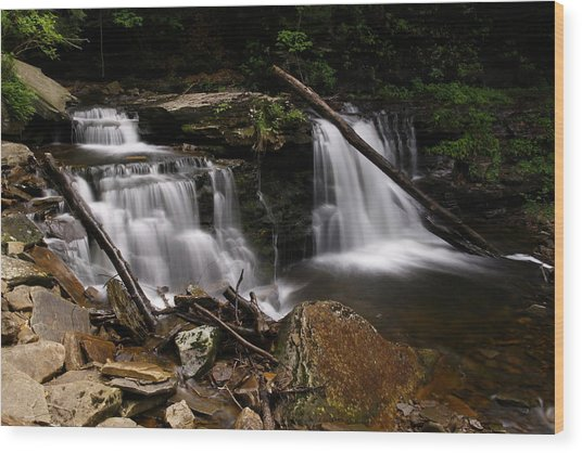 Cayuga Waterfalls Wood Print by David Simons