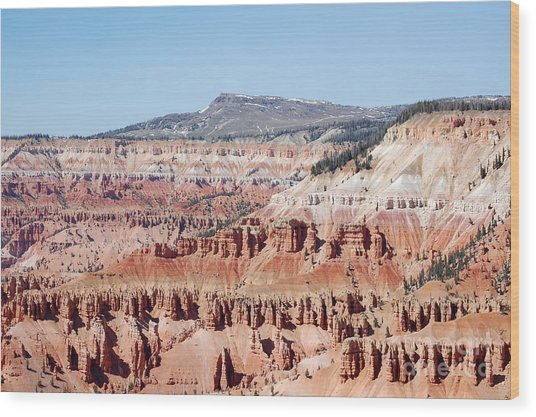 Cedar Breaks Up Close 3 Wood Print