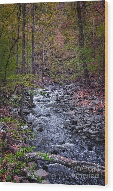 Cedar Falls Creek Wood Print