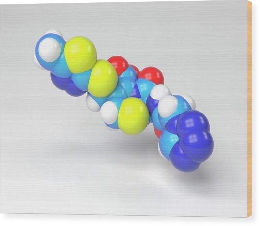 Cefazolin Molecule Wood Print by Indigo Molecular Images
