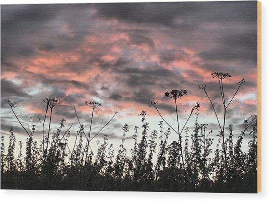 Celebrating Sunset Wood Print