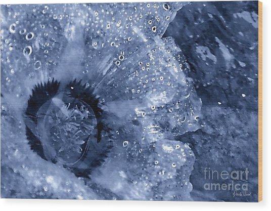 Cellophane Flower- Sapphire Wood Print