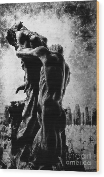 Cemetery Of Verona Wood Print
