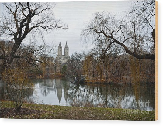 Central Park And San Remo Building In The Background Wood Print