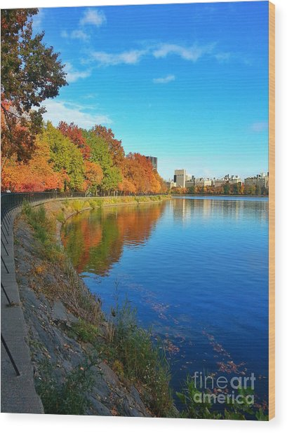 Central Park Autumn Landscape Wood Print