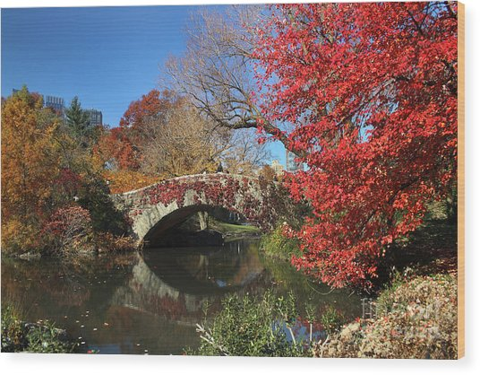 Central Park In The Fall-1 Wood Print
