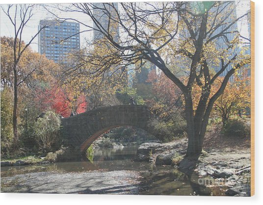 Central Park In The Fall-3 Wood Print