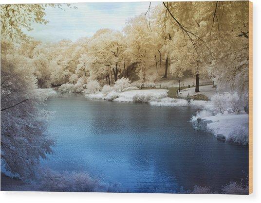 Central Park Lake Infrared Wood Print