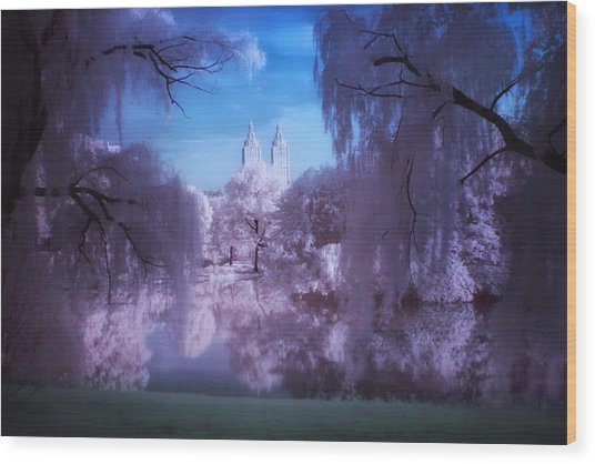 Central Park Lake Willows Color Wood Print