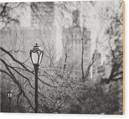 Central Park Lamppost In New York City Wood Print by Lisa Russo