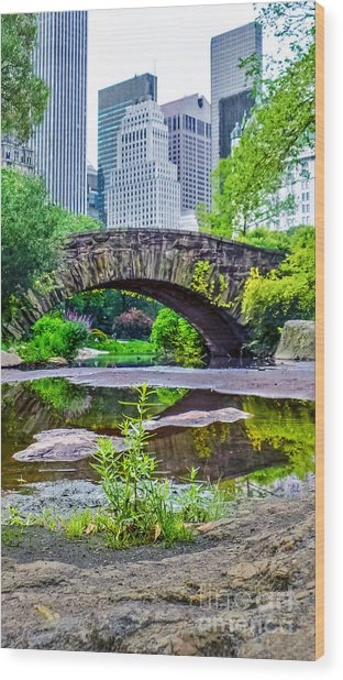 Central Park Nature Oasis Wood Print