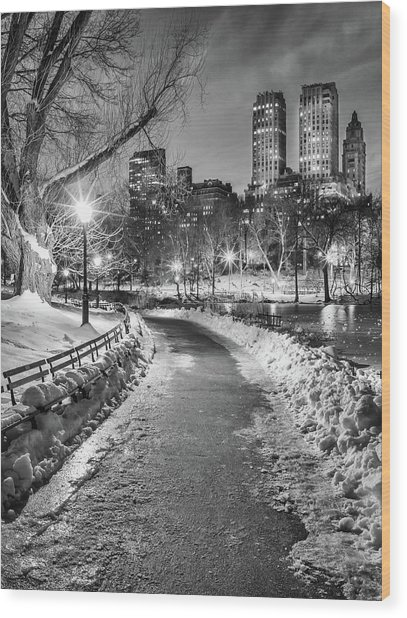 Central Park Path Night Black & White Wood Print by Michael Lee
