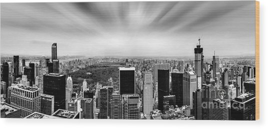 Central Park Perspective Wood Print