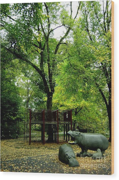Central Park Playground Wood Print by Claudette Bujold-Poirier